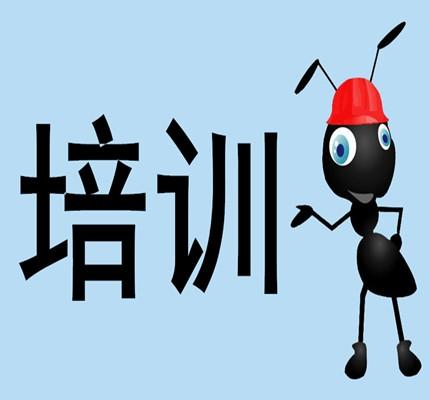 社会资讯_新闻资讯